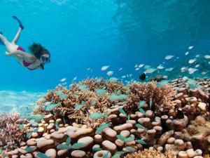 Four-Seasons-Resort-Maldives5-300x225