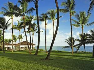 OneOnly-Ocean-Club-Bahamas_Top-Luxusurlaub_6-300x225